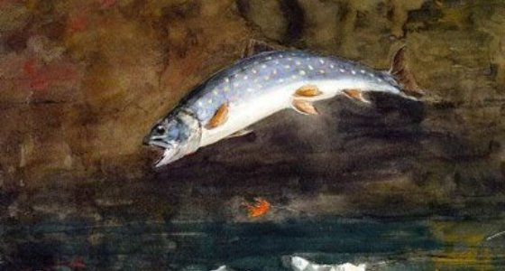 560_px_jumping_trout_winslow_homer.jpg