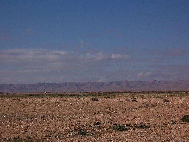800px-Algerian_desert.jpg