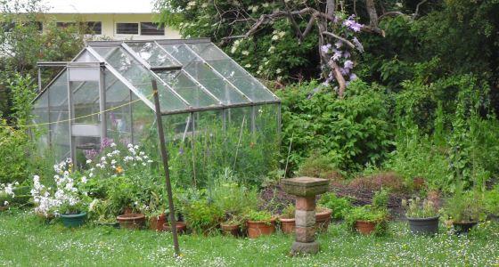 560px_garden_2.JPG