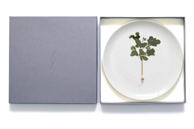 plate-edition-single.jpg