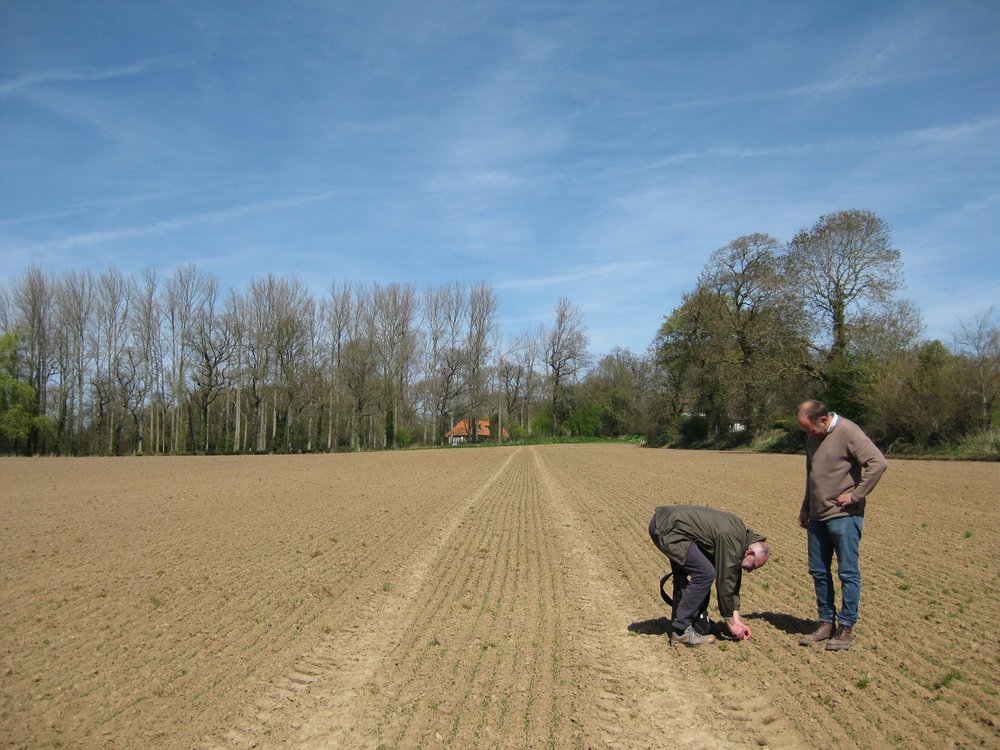 Francks-field-john-newling-and-Franck-Sagaert-farmer.jpg