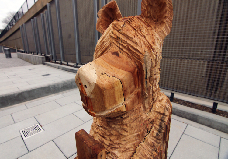 Bear+Head.jpg