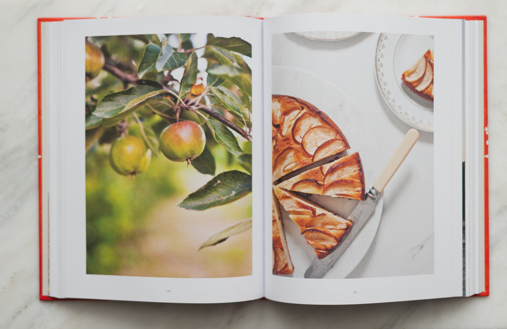 Veneto+The+Cookbook+-+(c)+Valeria+Necchio-2.jpg