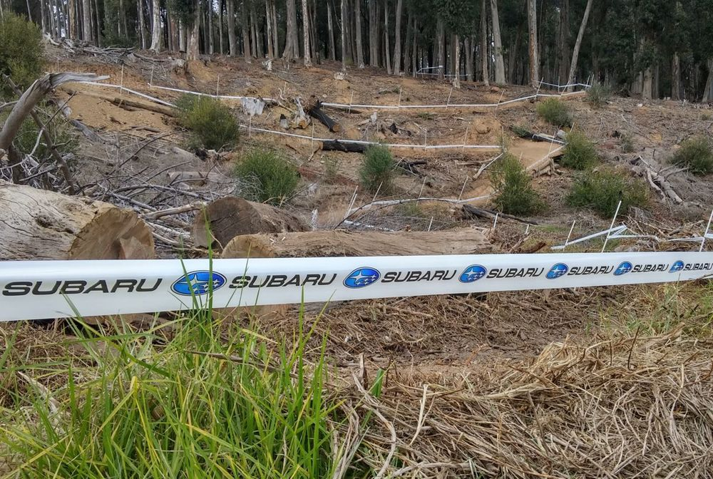 Countless hours have gone into the preparation of the cross country course that awaits participants of the 2015 Stihl South African Mountain Bike Championships presented by Subaru Cape Town/Novus Holdings. Bryan Strauss/Gameplan Media