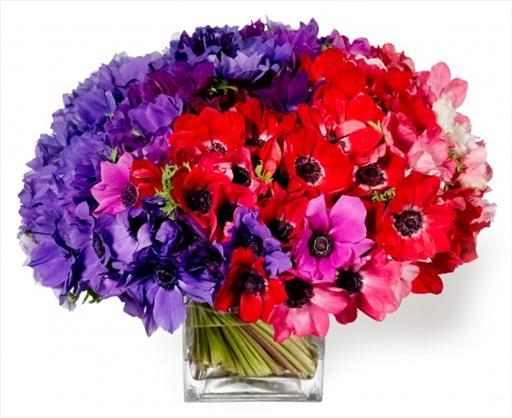 valentines day flowers5.jpg