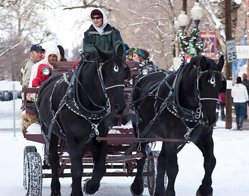 south-pearl-winterfest-box-elder-horse-and-carriage-ride.jpg