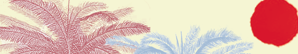 Palms & Sun Header.png