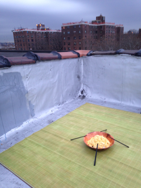 scrambled eggs on the rooftop