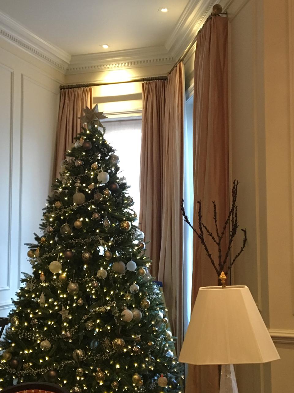 Christmas Tree Wrangler - 2.jpg