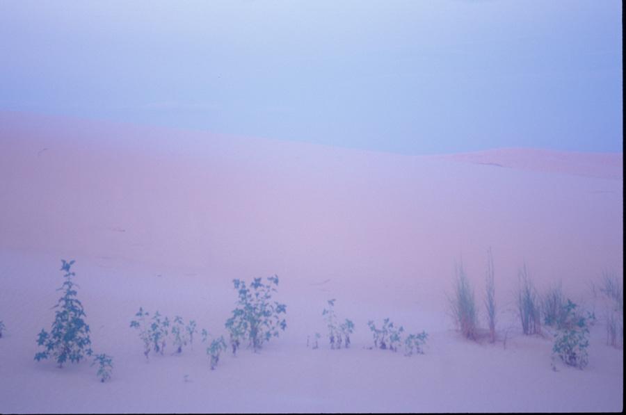 soft desert.jpg