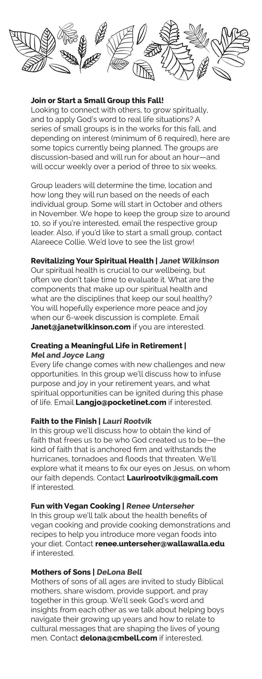 Church.Bulletin.Insert.9-27-17b KA Small Groups.jpg