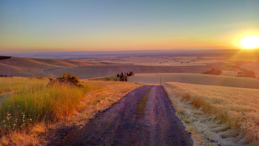 Mormon grade in walla walla at dusk. photo by robert van dorn