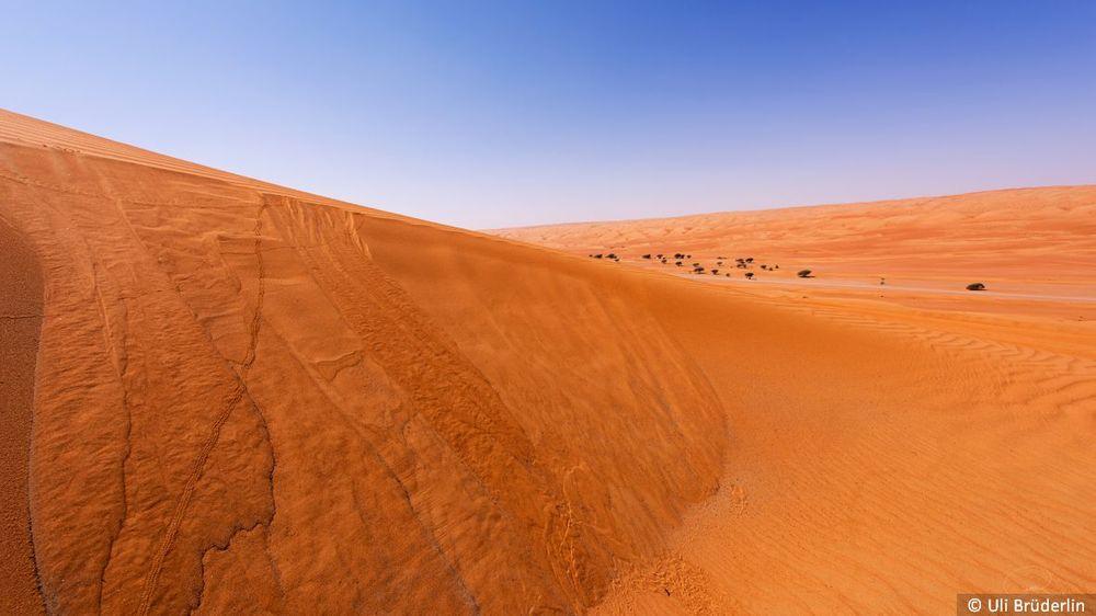 048 Sand Lawine