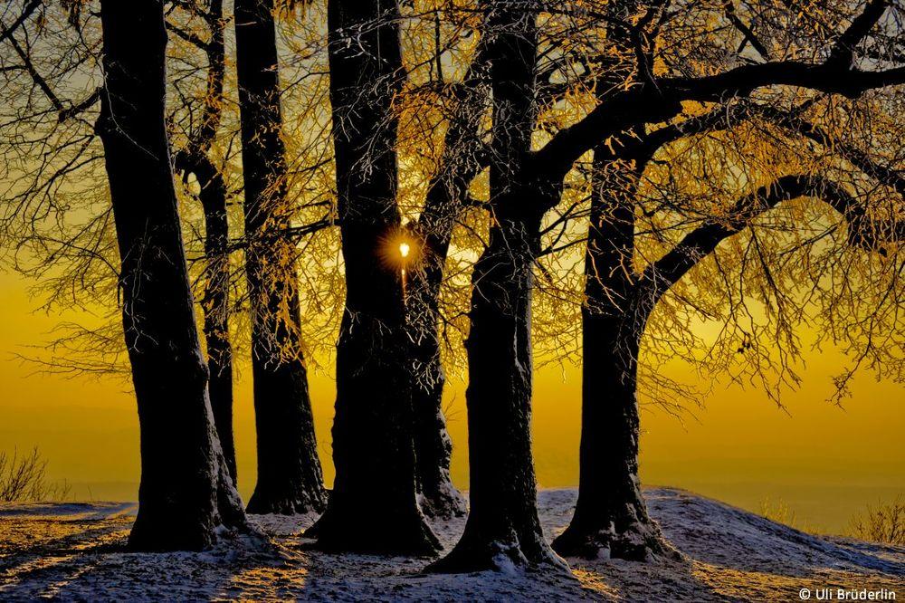 landschaften_003.jpg
