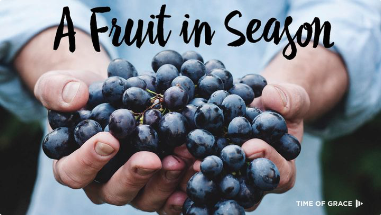 "God wants his people to bear fruit, fruit that is never out of season. A Christian's fruit proceeds from the hidden work of the Holy Spirit. Through the gospel of God's love, the Spirit changes us, enabling us to bear ""the fruit of the Spirit."""