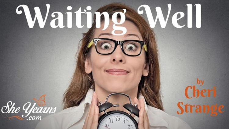 "We don't like to wait. From standing in line at the grocery store to anticipating God to move in our situation, each of us is familiar with the dreaded experience. The question then is not, ""Are we going to wait,"" but rather, ""HOW are we going to wait?"" Discover today how to avoid emotional fits of impatience and doubt, and develop a biblical strategy for waiting well."