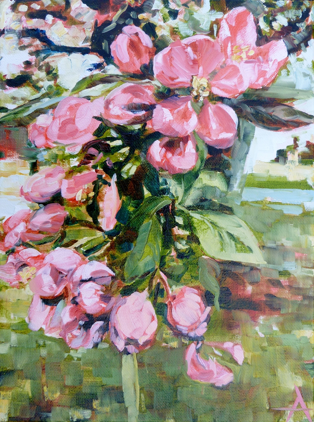 "SOLD, Waiting for Cherry Blossoms, Copyright 2014 Hirschten, Oil on Canvas, 9"" x 12"""