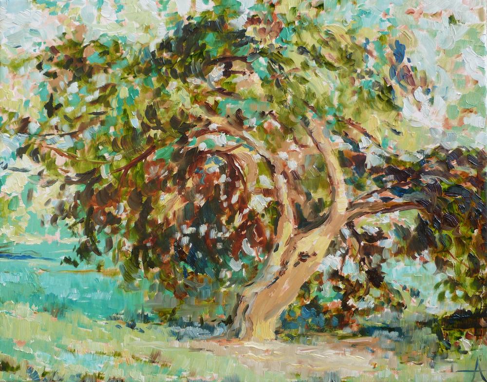"SOLD, The Climbing Tree, Copyright 2013 Hirschten, Oil on Canvas, 16"" x 20"""