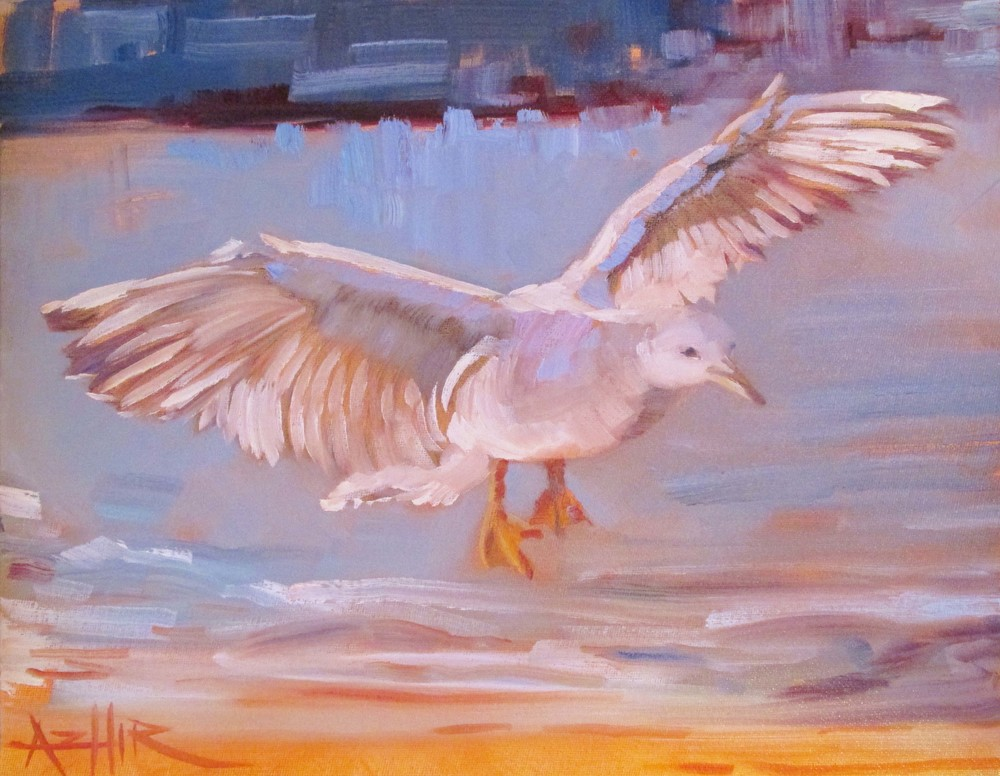 "SOLD, Seagull in the Air, Copyright 2016 Hirschten, Oil on Canvas, 11"" x 14"""