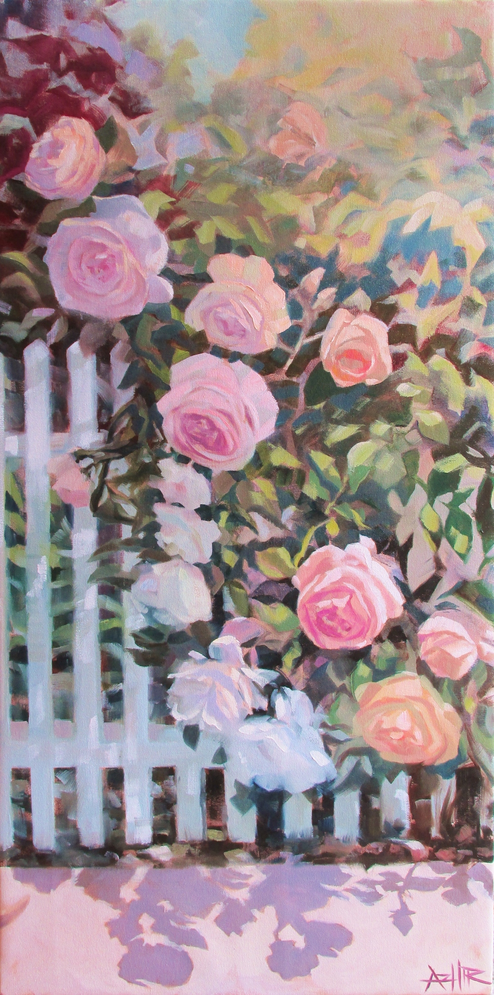 "SOLD, Roses on the Picket Fence, Copyright 2016 Hirschten, Oil on Canvas, 18"" x 36"""