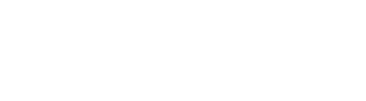 The Institute for Critical Social Inquiry (ICSI)