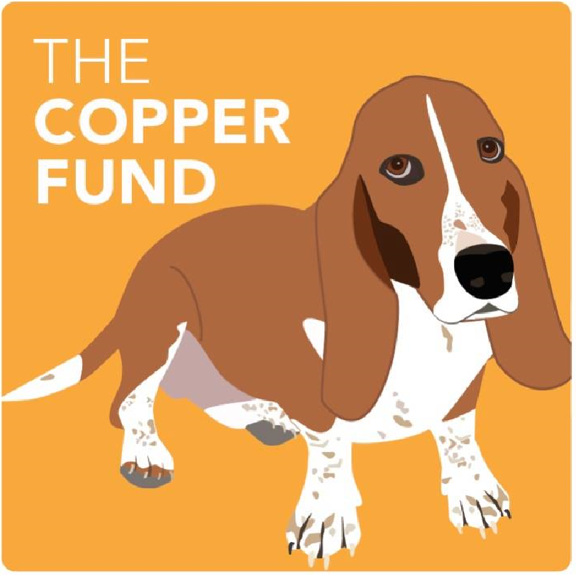 CopperFundGood.png