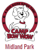 CampBowWow.png