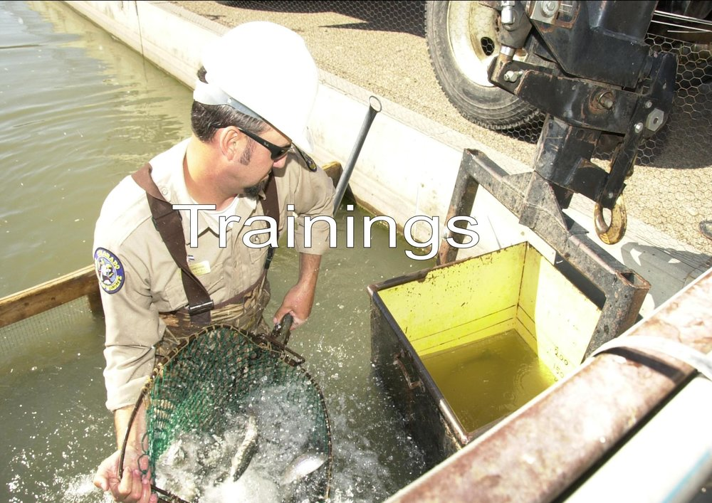 Loading Fish at Pueblo Hatchery, Michael Seraphin, Colorado Parks and Wildlife, 9/29/2009