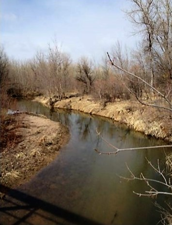 Plum Creek Streambank Erosion Upstream from Chatfield Reservoir