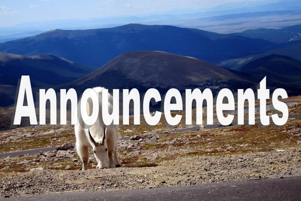 Mount Evans Mountain Goats. Flickr.com. Wally Gobetz. Photo taken: 9/5/2011.