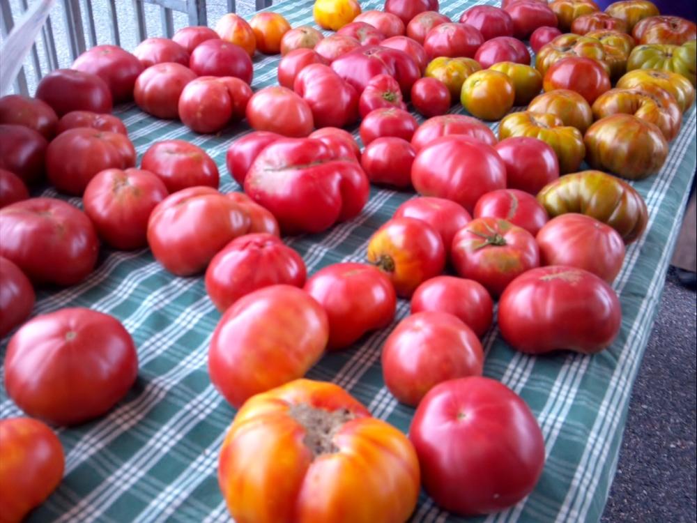 Montclair Farmer's Market, September 2014