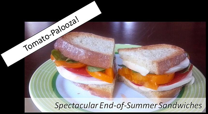 Tomato-palooza sandwiches