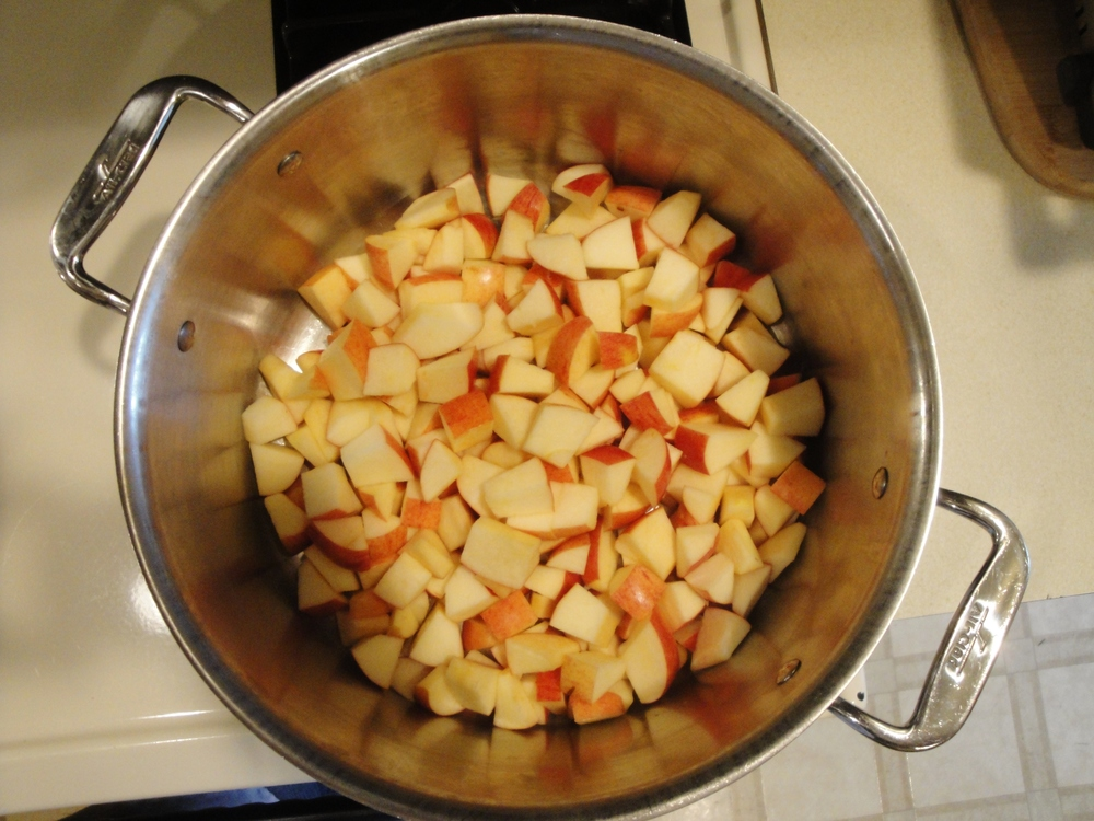 Gala apples simmering on the Adventure Kitchen stove, March 2015