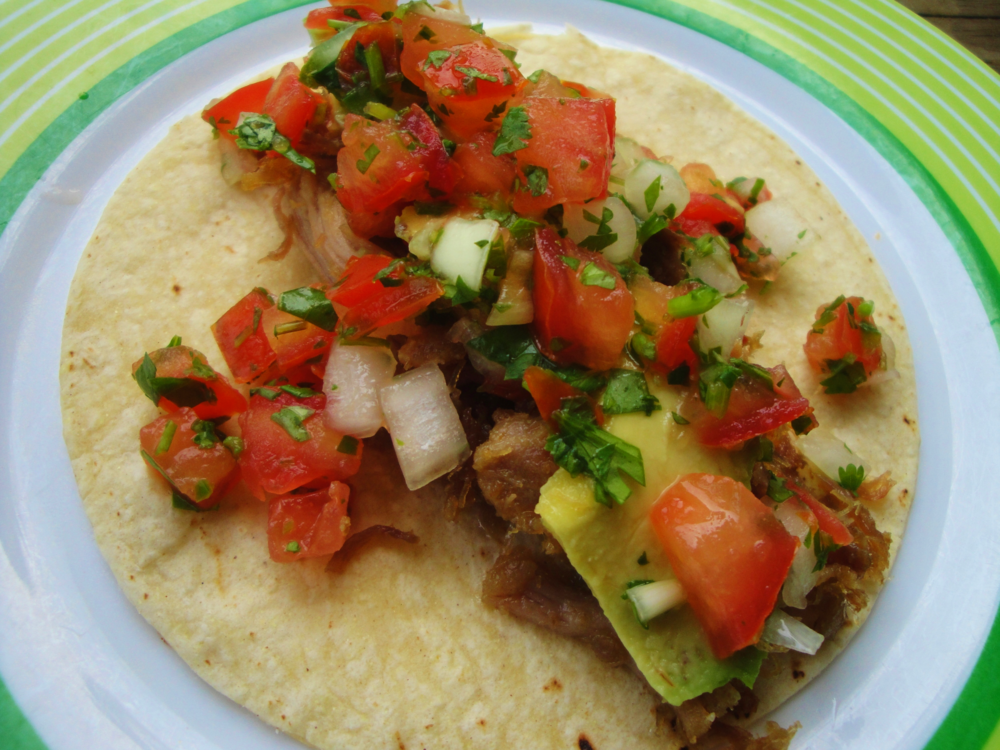 Carnitas taco, topped with avocado slices and pico de gallo. Made in the Adventure Kitchen in June, 2015.