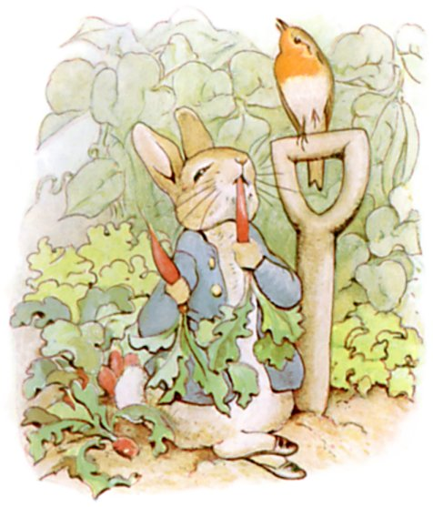 Peter Rabbit eating radishes in Mr. McGregor's garden.