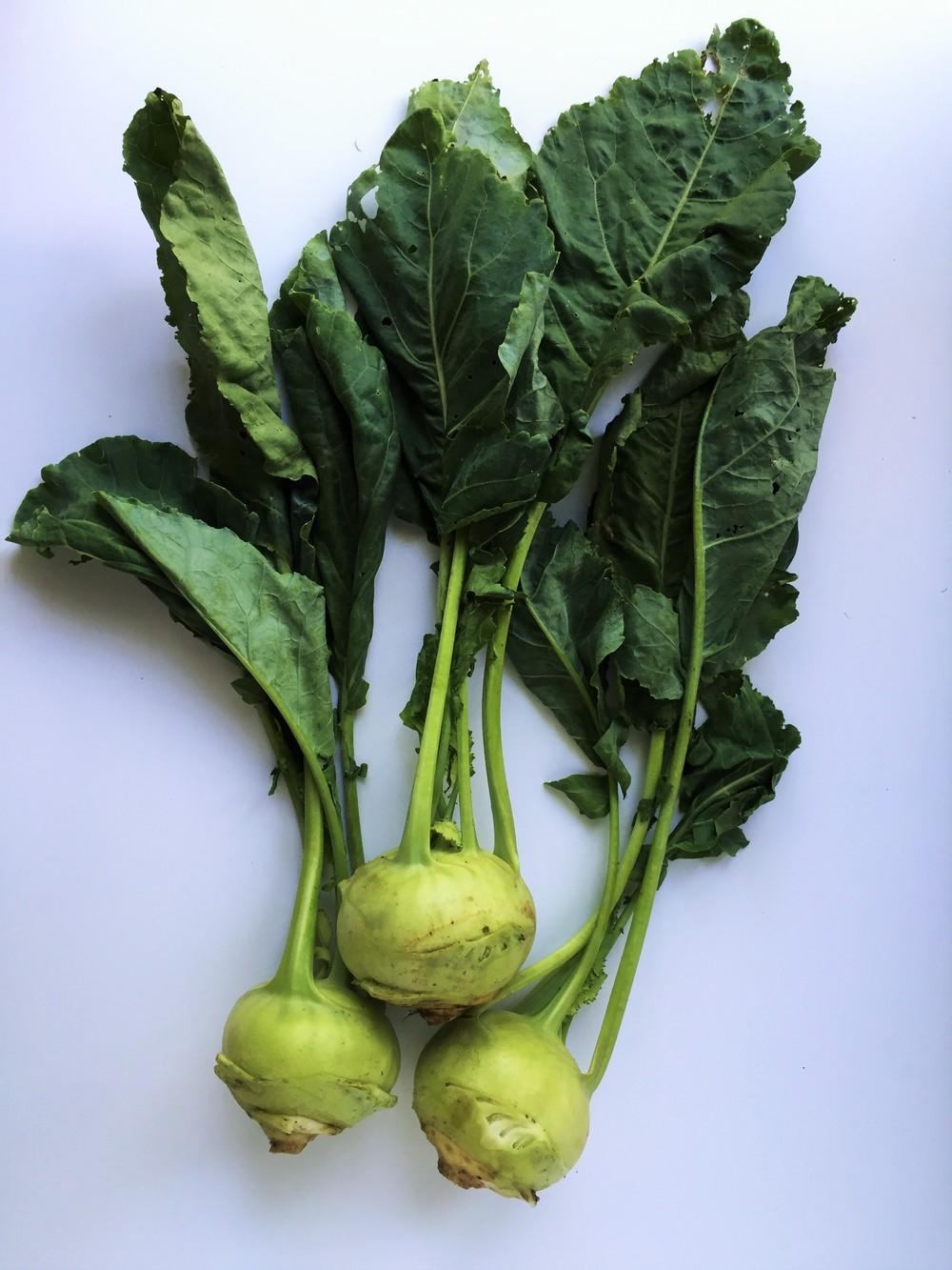 Kohlrabi. Use the bulbs for  Kohlrabi Salsa Cruda  (you can save the leaves to saute for another dish).