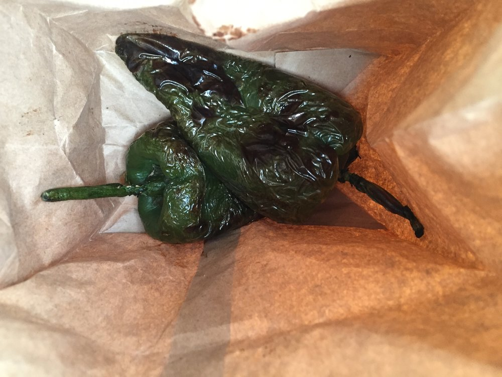 Roasted Poblano chiles in a paper bag, ready to sweat.