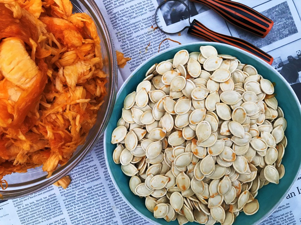 Pumpkin seeds freshly scooped from inside our Jack-o-lantern in the Adventure Kitchen.