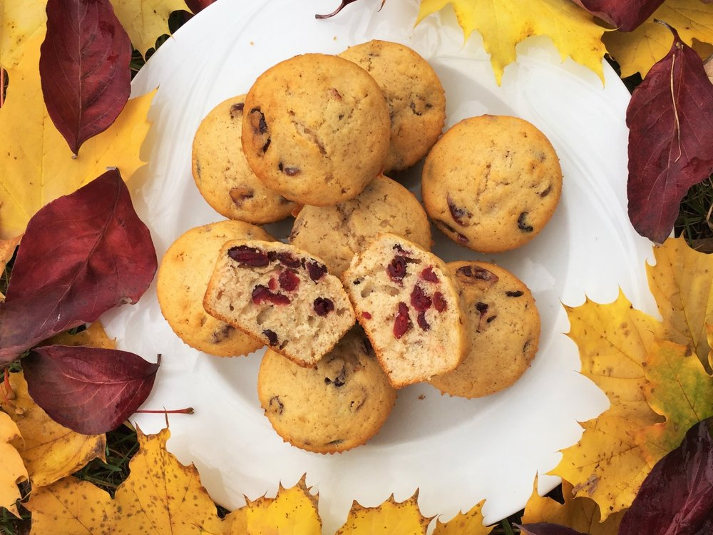 Cinnamon-Cranberry Muffins made in the Adventure Kitchen November 2015