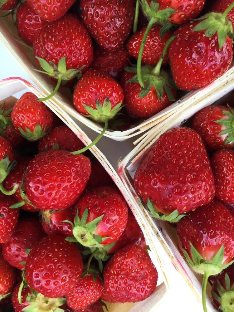Fresh, local strawberries from my CSA.