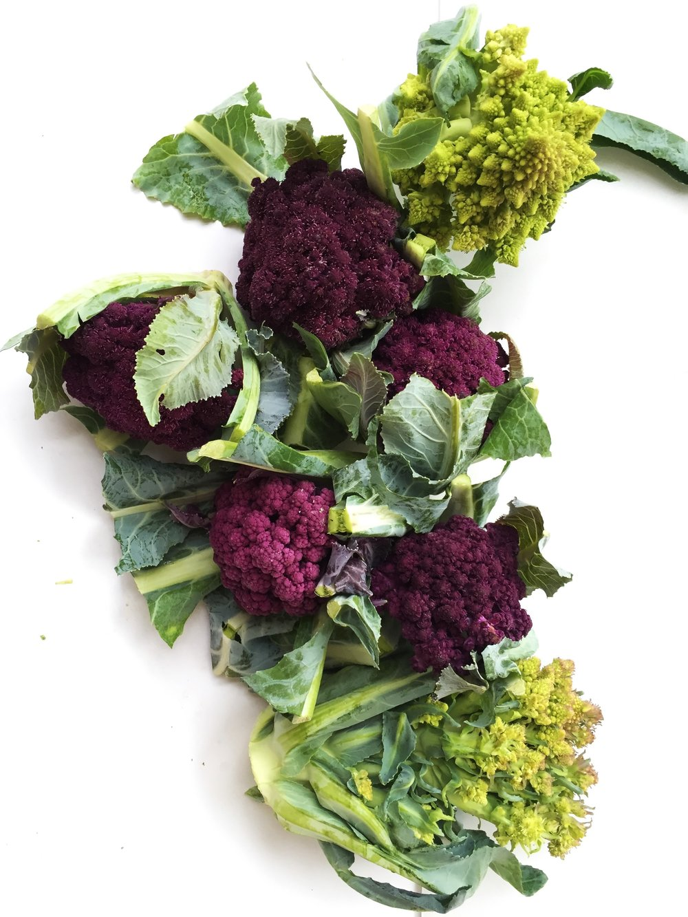 Purple cauliflower and romanesco from my CSA in early July