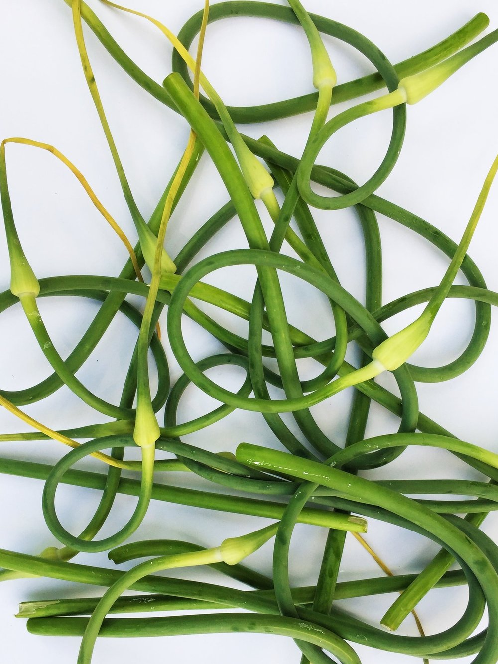 Garlic scapes from my CSA in late June.