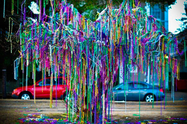 A tree in New Orleans covered in Mardi Gras beads