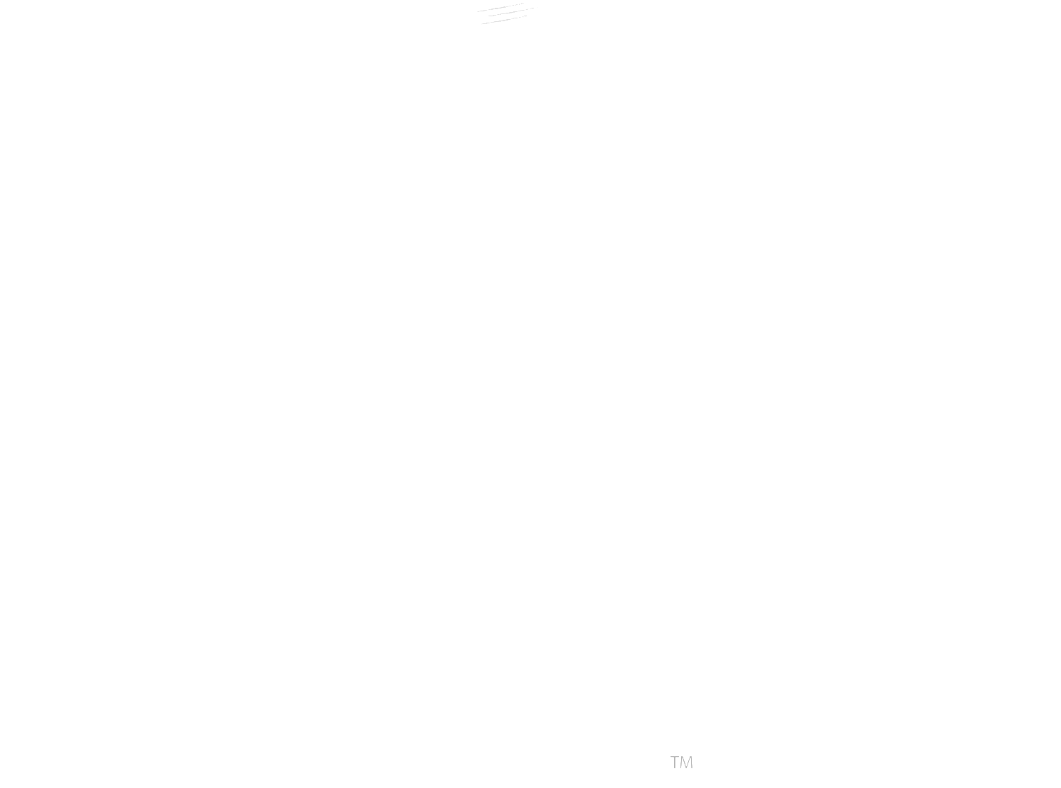 Troodon Design Co.