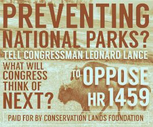 ConservationOldFade.jpg