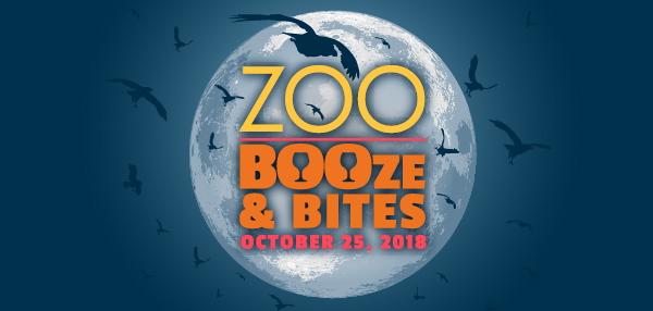 ZooBOOze-CC-header.jpg