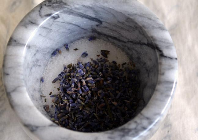 Lavender | Pass the Cocoa