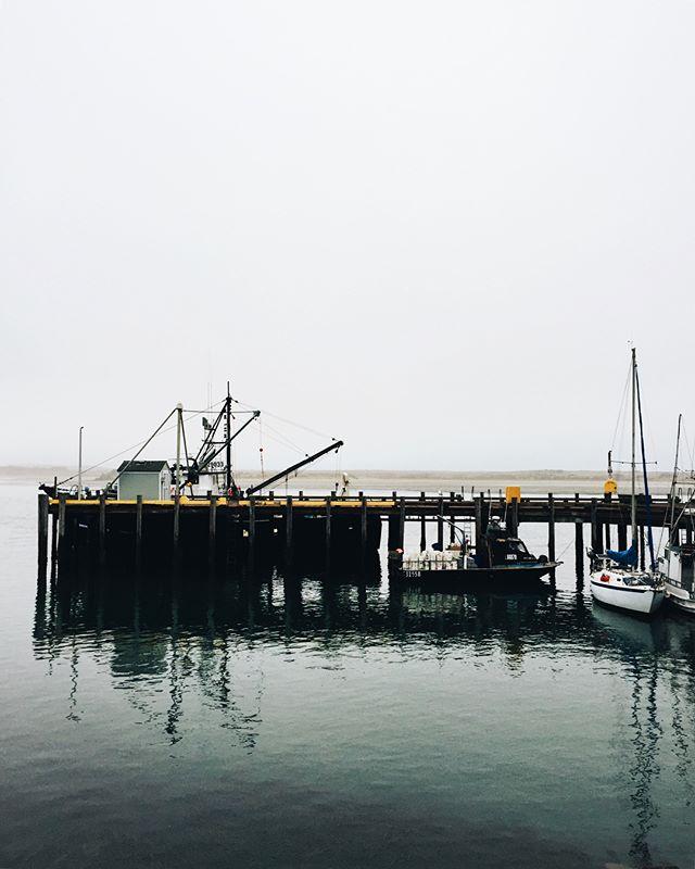 "Yesterday in Morro ""Grey"" 🌊🌬 #morrobay #centralcoast #california #embarcadero #overcast #harbor #morrobayharbor #greyday #fog #getoutside #findadventure #goexplore #ventureout #optoutside #californiaexplore #coastalvibes #vscocam"