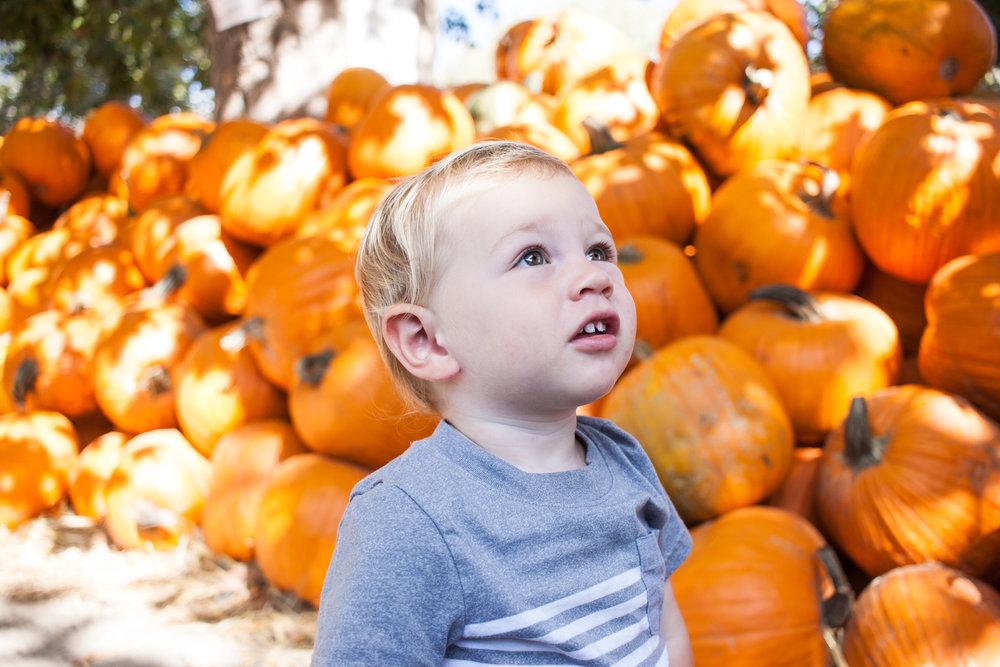 pumpkins18-6.jpg