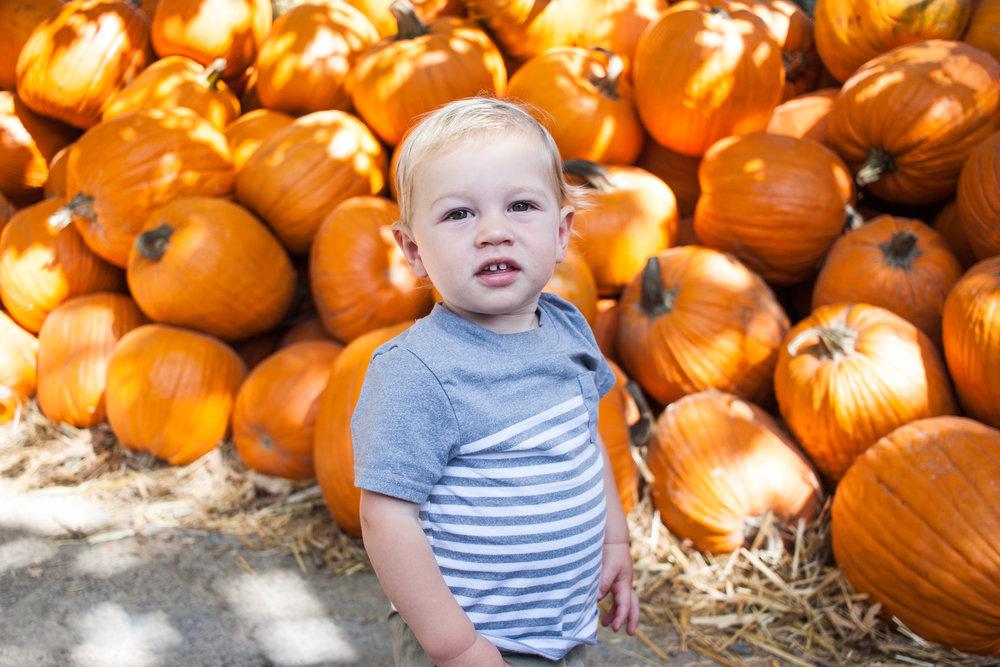 pumpkins18-2.jpg